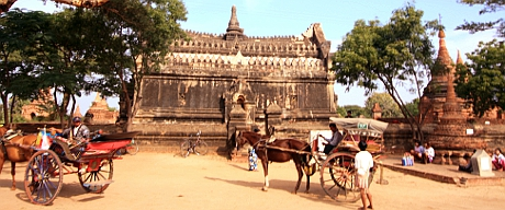 Horse Carriages in Bagan.