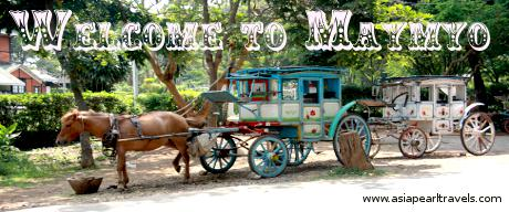 Horse Cart in Pyin Oo Lwin